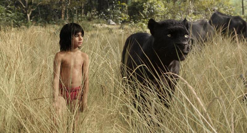 映画「The Jungle Book」ジャングルブックを実写化!2016年公開