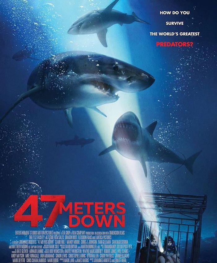 映画 47 Meters Down 2017年の鮫映画枠 海底47メートルで巨大サメに襲われる